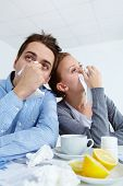 picture of rhinitis  - Image of sick business partners with rhinitis sitting in office - JPG
