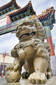 Chinese Mmale Foo Dog Guardian At Chinatown Gate