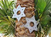 foto of sukkoth  - decorative six - JPG