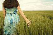 stock photo of spring-weather  - Young woman walking in the wheat field - JPG
