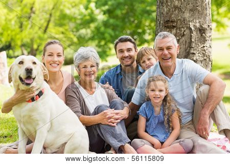 Portrait of an extended family with their pet dog sitting at the park poster