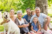 image of maturity  - Portrait of an extended family with their pet dog sitting at the park - JPG
