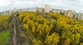 Power lines among trees with colorful foliage in park on Elk island at Moscow, view from unmanned qu