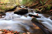 Tributary of Lake Nantahala