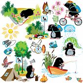 foto of bulrushes  - cartoon set with mole in camping - JPG