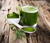 picture of chlorella  - Young barley and chlorella spirulina - JPG
