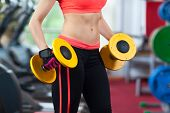 pic of lifting weight  - Woman in gym sport exercising with dumbbells lifting weights - JPG