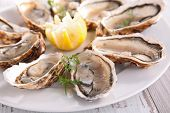 picture of christmas meal  - oyster - JPG