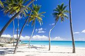 pic of greater antilles  - Bottom Bay in Barbados in west Caribbean - JPG