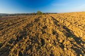 stock photo of plowed field  - Beautiful plowed field autumnal landscape photographed in nice morning light under blue sky. Tranquil rural scene of plowed polish fields photographed with full frame camera.