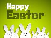pic of bunny rabbit  - Vector  - JPG