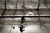 picture of early-man  - Silhouette of back lit cyclist on bright day in late winter or early spring with sharp shadow on asphalt street - JPG