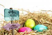 picture of egg-laying  - Easter egg hunt sign against three easter eggs nestled in straw nest - JPG