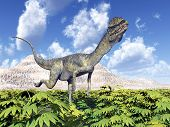 image of dilophosaurus  - Computer generated 3D illustration with the Dinosaur Dilophosaurus - JPG