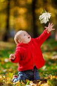 stock photo of crawling  - Cheerful baby in a red dress playing with yellow leaves - JPG
