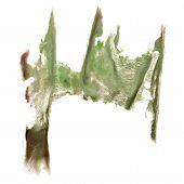 image of insults  - abstract hand light green drawn watercolor blot insult Rorschach psychology - JPG