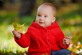 picture of crawl  - Cheerful baby in a red dress playing with yellow leaves - JPG