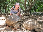 stock photo of mauritius  - Smiling young woman touching two centenarian tortoises in a natural park - JPG