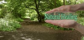 stock photo of wicca  - Female parallel hands with the words Natural Healing floating between on a green woodland path background depicting the path to natural healing - JPG