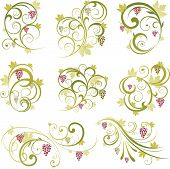 stock photo of grape-vine  - Abstract floral vine grape ornament - JPG