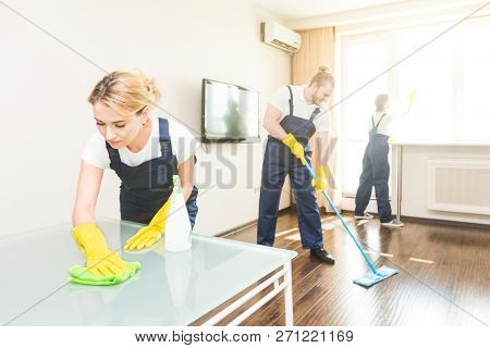 poster of Cleaning Service With Professional Equipment During Work. Professional Kitchenette Cleaning, Sofa Dr