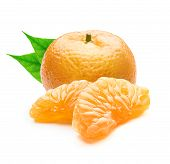 Juicy Tangerine. Peeled Tangerine Or Clementine Or Orange Fruit With Leaves Isolated On White Backgr poster