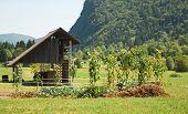 Wood Storage Building & Veg Garden poster