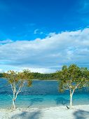 stock photo of mckenzie  - Beautiful beach and crystal clear fresh water at Lake McKenzie on Fraser Island Australia - JPG