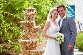 stock photo of fountains  - Bride And Groom At Wedding Ceremony - JPG