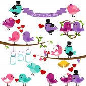 stock photo of fiance  - Vector Collection of Wedding and Love Themed Birds - JPG