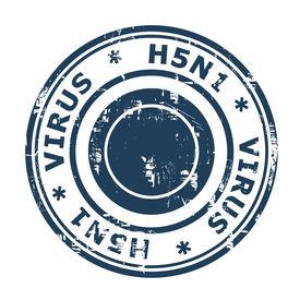 picture of avian flu  - H5N1 Virus Stamp - JPG