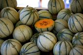 stock photo of cantaloupe  - Heap of small cantaloupe melons for sale at farmers market - JPG