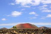 stock photo of magma  - Volcanic Lanzarote landscape - JPG