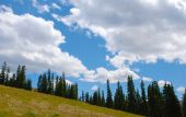 stock photo of colorado high country  - A in the high mountains in the Colorado Rockies with upright fir trees  - JPG