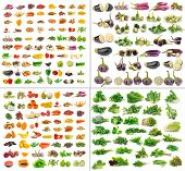 pic of fruits  - fruit and Vegetables collection isolated on white background - JPG