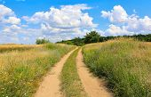 stock photo of steppes  - rut road in summer steppe - JPG