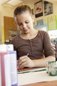 picture of pre-teen girl  - Pre teen girl in art class - JPG