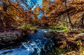 pic of guadalupe  - Beautiful Fall Foliage Surrounding the Guadalupe River Texas - JPG