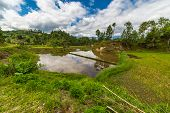 image of mud-hut  - Stunning landscape and bright rice fields in the remote Mamasa region West Tana Toraja South Sulawesi Indonesia - JPG