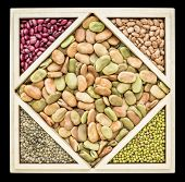 pic of tangram  - fava beans and other beans and French lentils in a wooden tray inspired by Chinese tangram puzzle - JPG