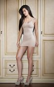 picture of brunette hair  - Charming young brunette woman in tight fit short nude dress leaning against wooden wall - JPG