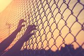 stock photo of chain link fence  - Hand holding on chain link fence Vintage filter effect - JPG