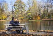 picture of cuddle  - Cuddling, romantic couple on the bench, Wilanow Park, Warsaw, Poland ** Note: Shallow depth of field - JPG