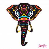 pic of indian elephant  - Indian Elephant head with drawing - JPG