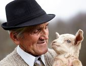 image of baby goat  - Closeup of a senior man holding a cute baby goat outdoor - JPG