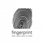 foto of fingerprint  - Fingerprint  - JPG