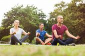 Group of middle aged people doing yoga sitting on grass. Three people practicing meditation and yoga poster