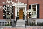 stock photo of brownstone  - Porch and entry into a Beacon Hill brownstone with blooming trees - JPG