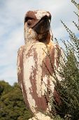 picture of eland  - A lovely Kookaburra carving at Elands Australia - JPG