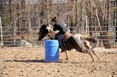 picture of barrel racing  - A young woman turns around a barrel and races to the finish line - JPG